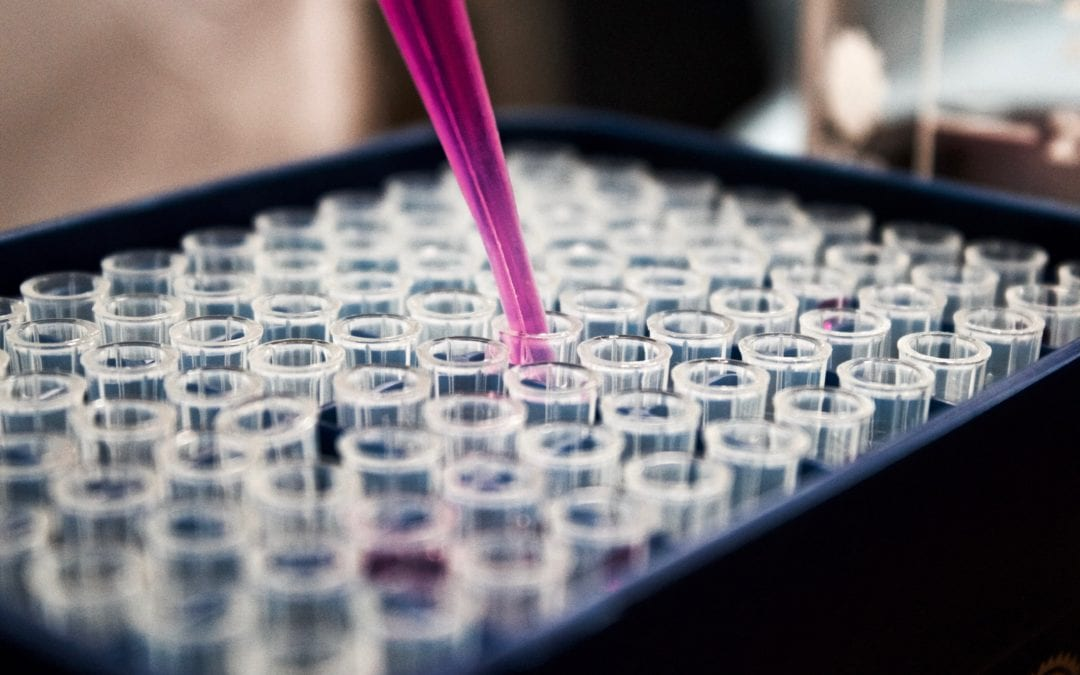 High Court Agrees Sperm Donor is Father